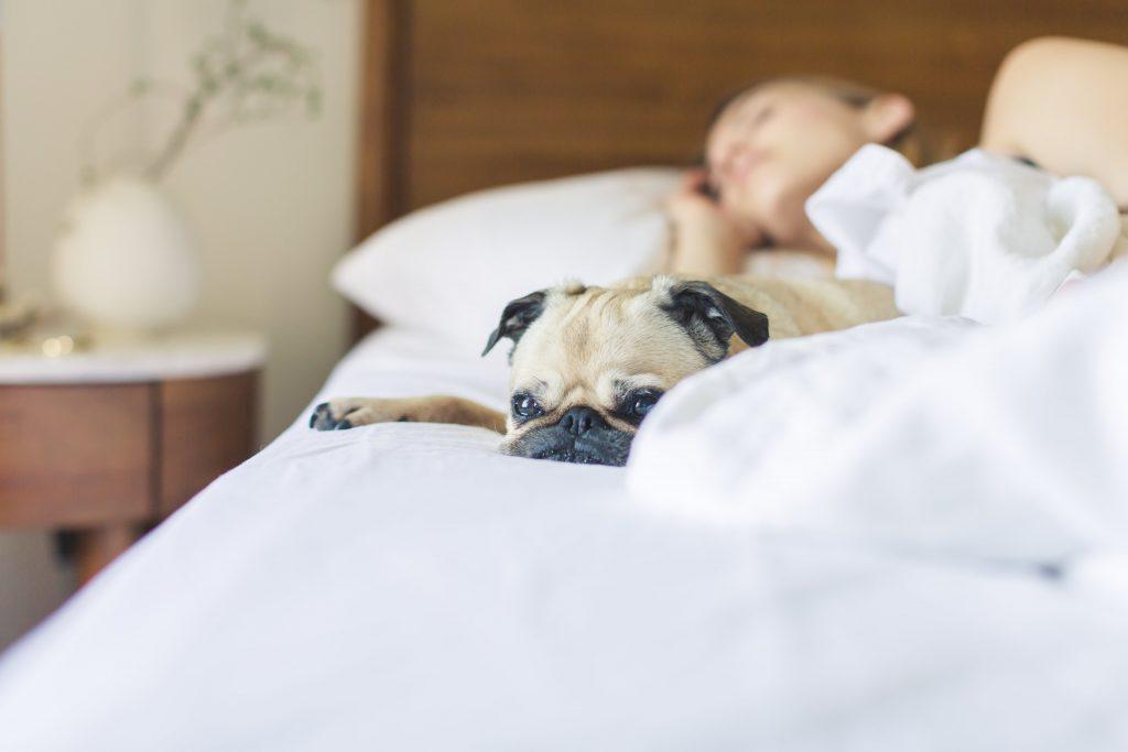 oversleep when sick