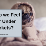 Why Do We Feel Safe Under Blankets?