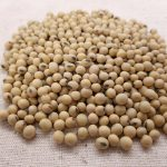 soybean rem sleep review