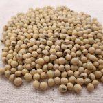 soybean rem sleep review